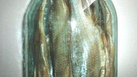 Вяленая рыба в стеклянной банке