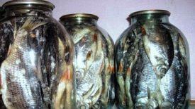 хранение вяленой рыбы в стеклянных банках
